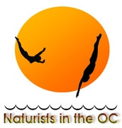 Welcome to Naturist in the OC